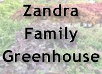 Zandra3.png