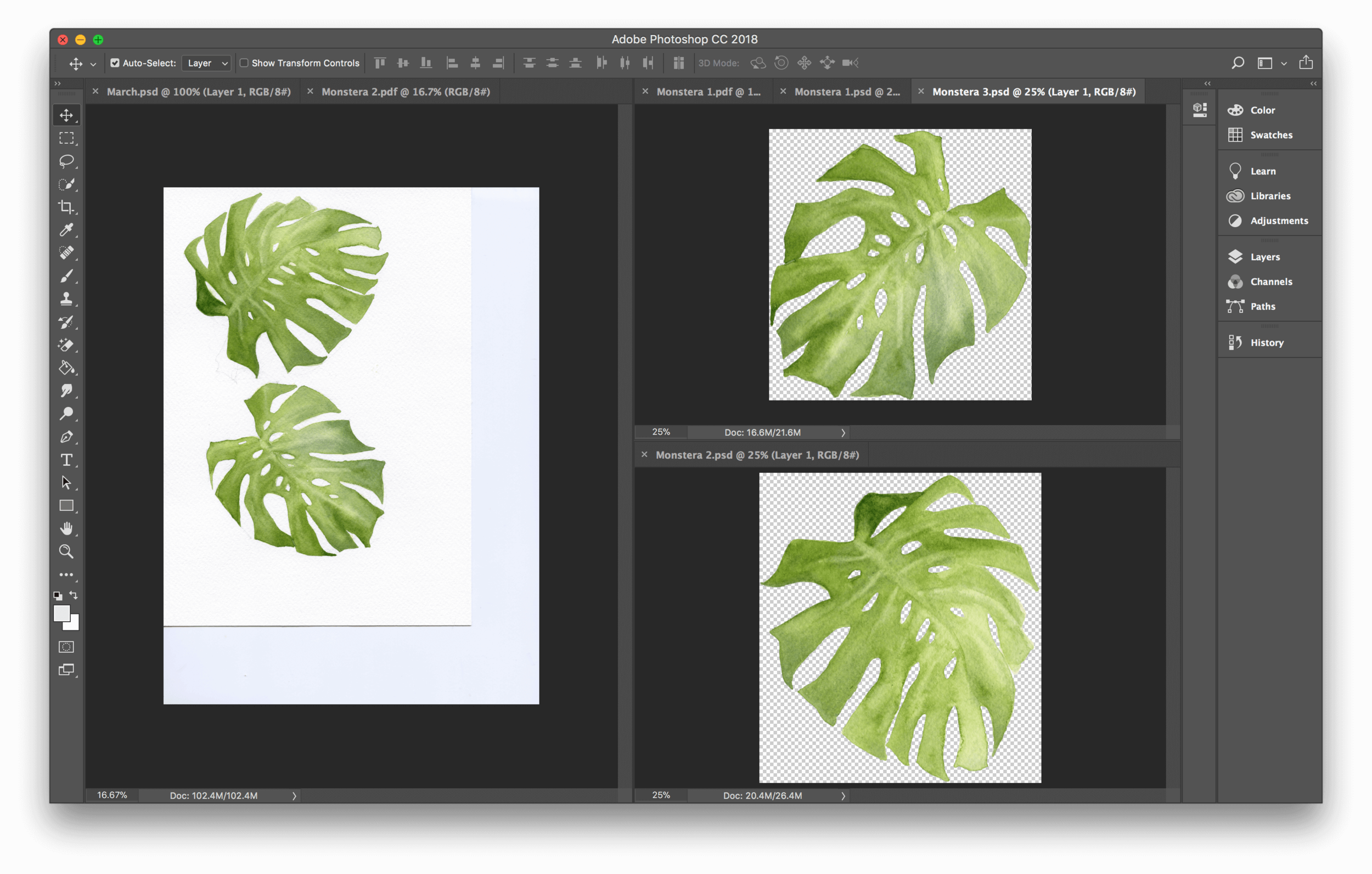 How to Digitize Watercolor