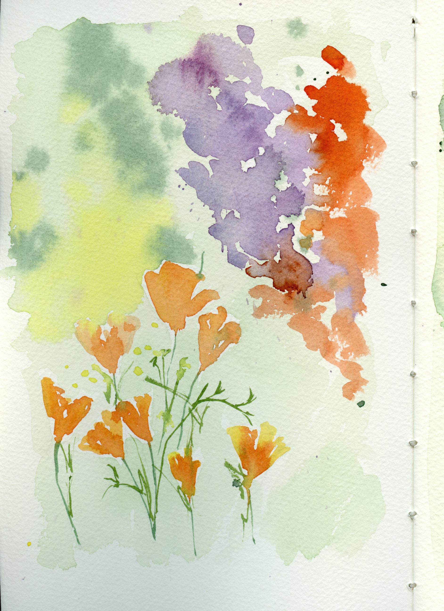 Poppies001.jpg