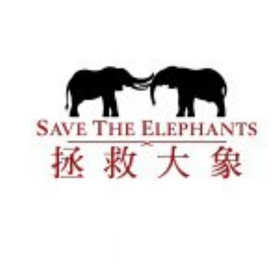 """SAVE THE ELEPHANTS    You have probably seen elephant symbols sprinkled about throughout my website. Not only do I LOVE them as animals, but what they represent in my life.  (you can see my explanation below) . I can't say enough about this organization (among a few I love), in how they protect and fight for Elephants preservation, they do extensive research to better understand them and how we as humans can co-exist, monitor their environment to keep them safe!   """"Our mission is to secure a future for elephants and to sustain the beauty and ecological integrity of the places they live; to promote man's delight in their intelligence and the diversity of their world, and to develop a tolerant relationship between the two species."""""""
