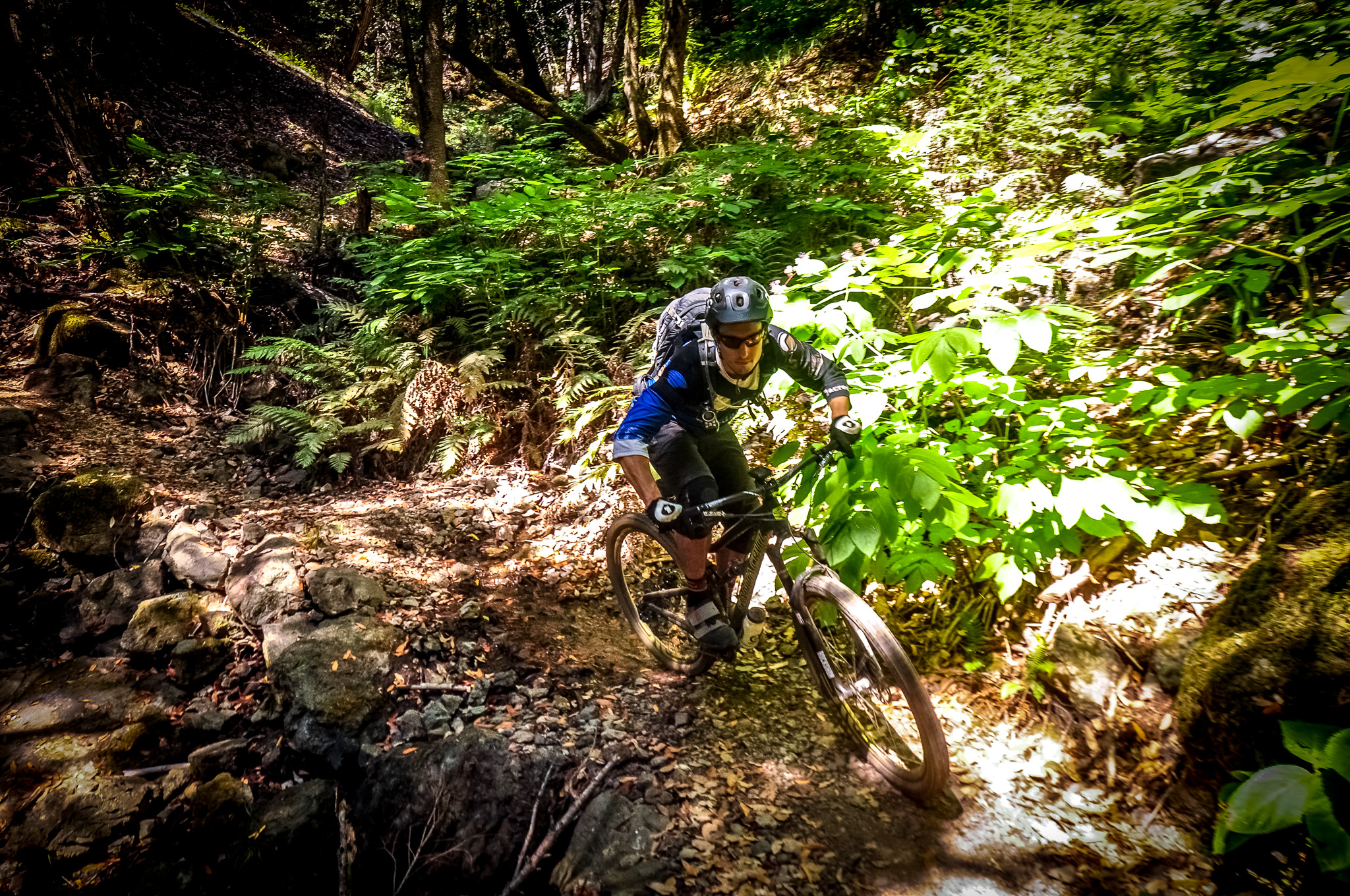 Descend IMBA designed purpose built trails