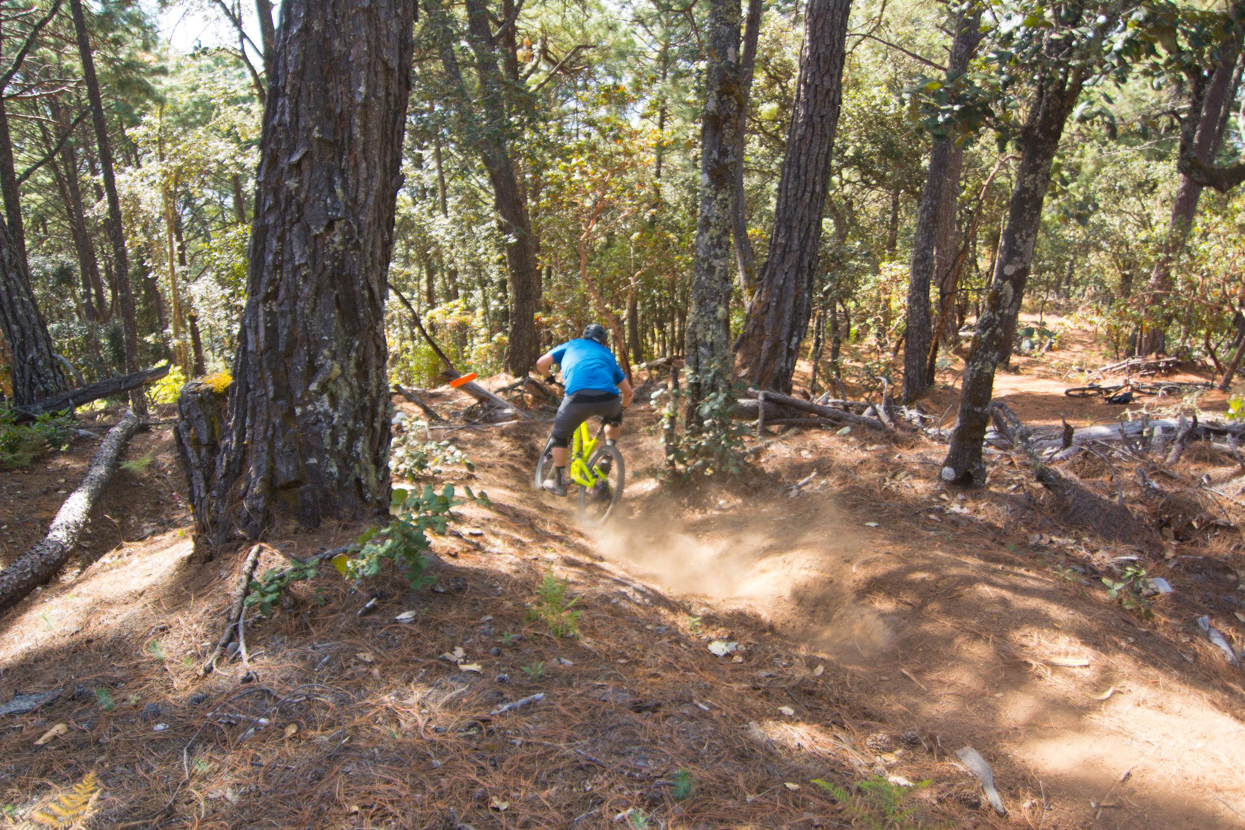 Flowy Sierra Norte singletrack trails fr mountain biking tours