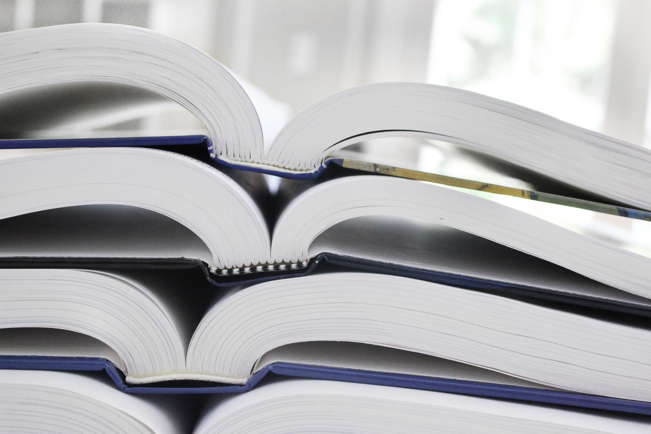 Dynamic Ideas Books