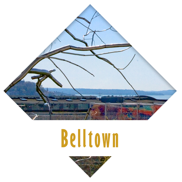 circle icons - Belltown.jpg