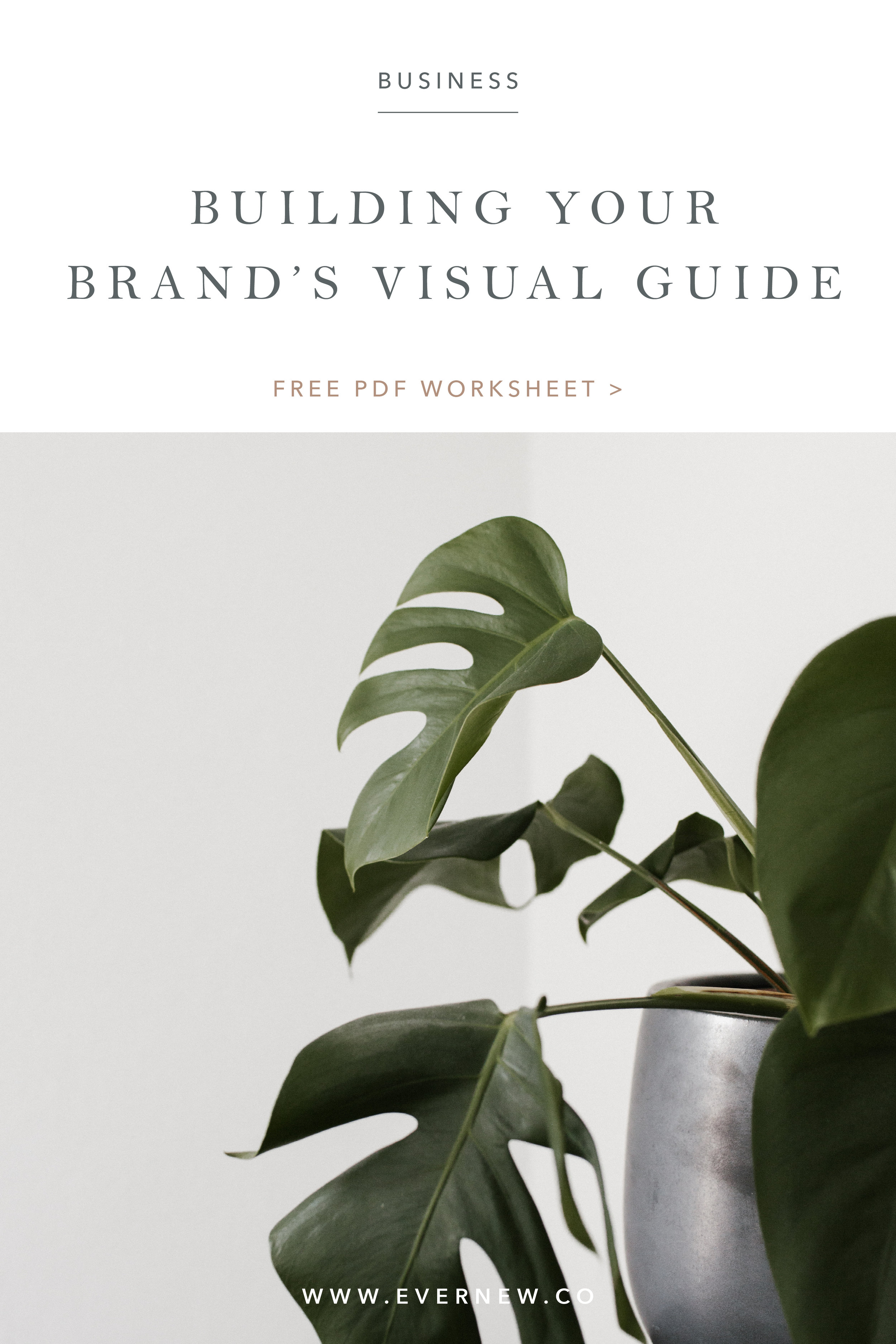 No. 1 - Building your brand's visual guide.jpg