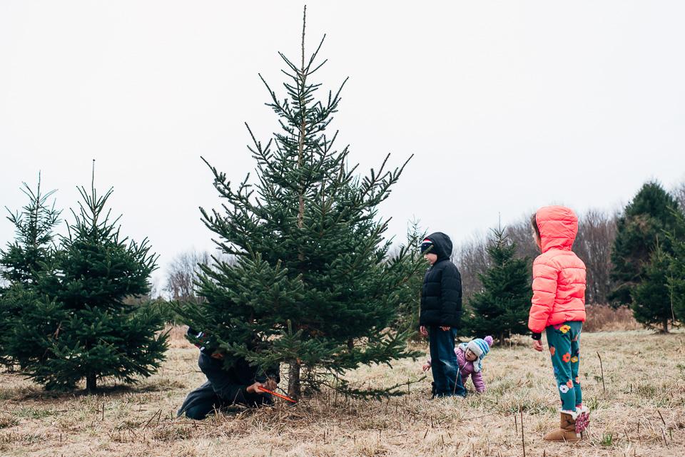 Christmas Tree Farm Westport Connecticut Family-12.jpg