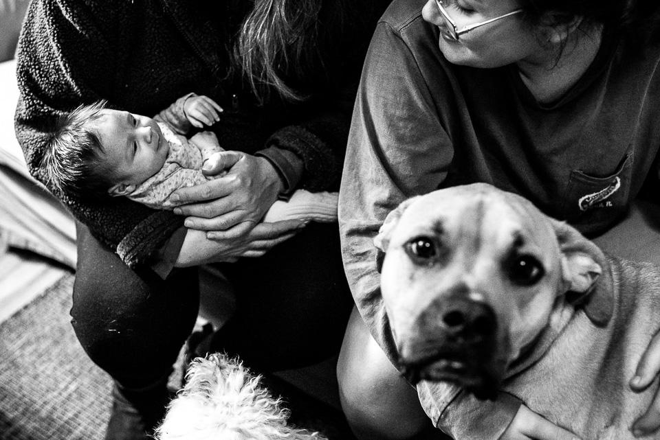 Fairfield County Newborn Photographer Lenna-16.jpg