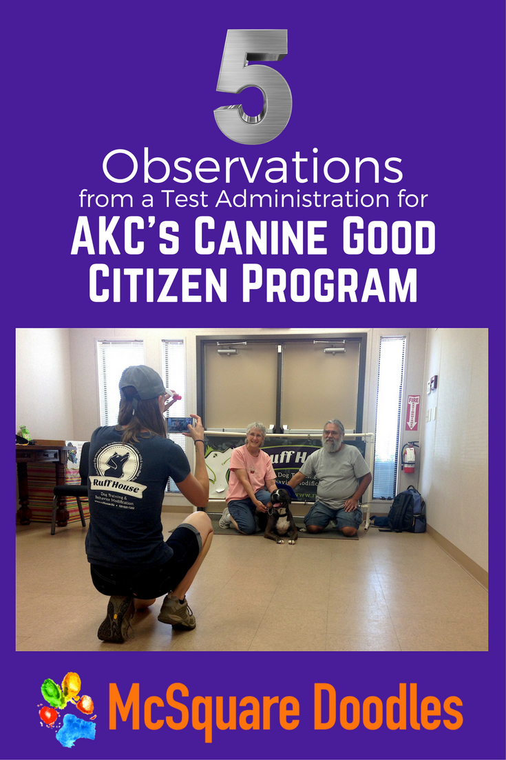 Five Observations from a Test Administration for AKC's Canine Good Citizen Program