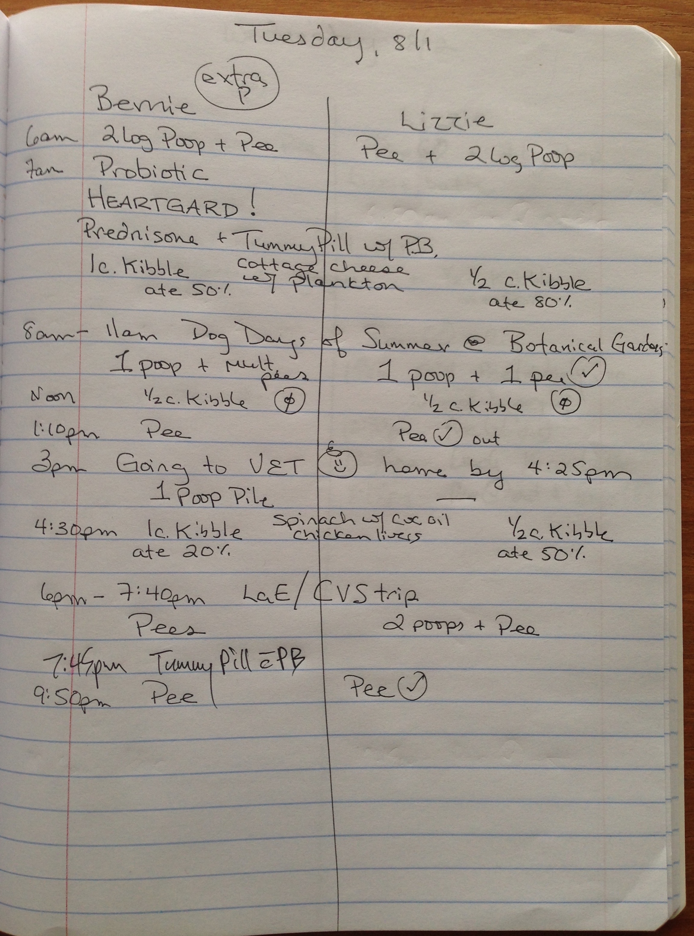A sample page from our composition book chart where we track our pup's daily lives: food & water intake, output, and activities.