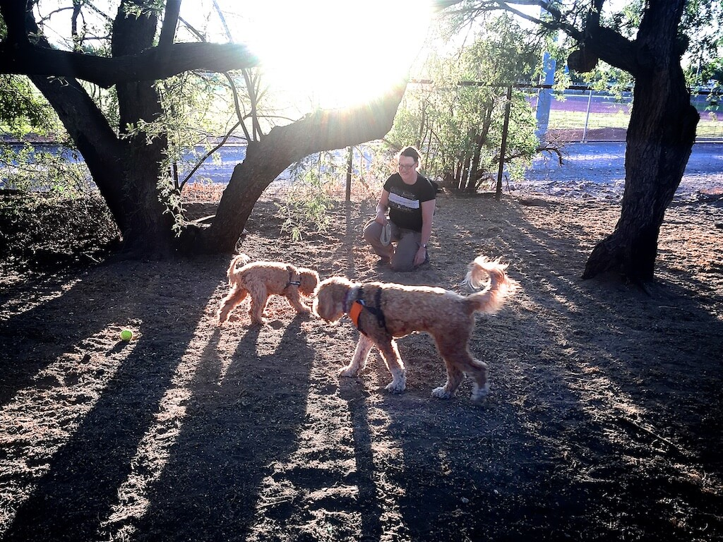 Enjoying a trip to Smiling Dog Ranch in Tucson at the end of the day.