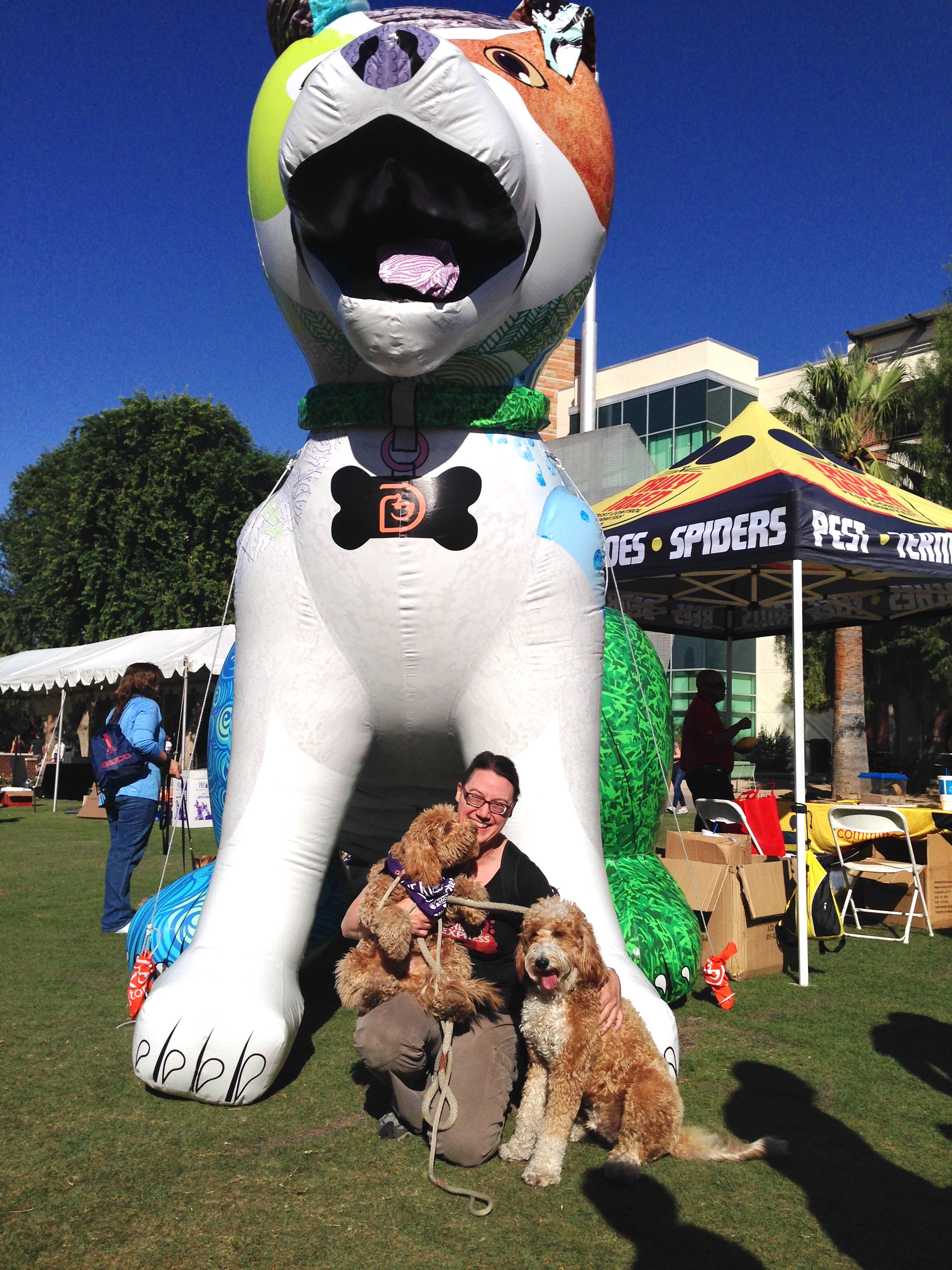 Most of the McSquare pack posing with the Dogtopia doggie display after our 3K walk to support Southern Arizona's Humane Society.
