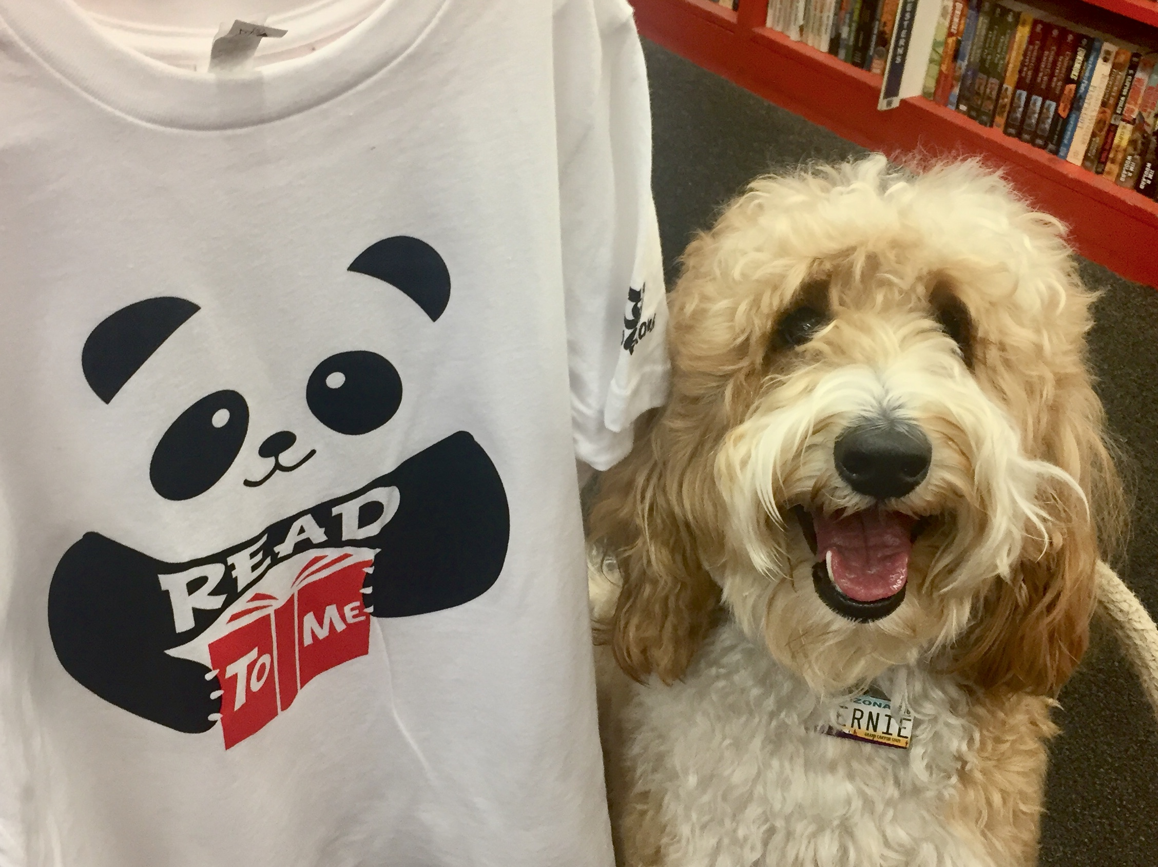 """Knowing how much I love pandas, Bernie McSquare saw this panda """"Read To Me"""" t-shirt and asked me to read to him again."""