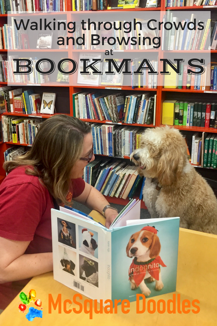 Practicing for our Canine Good Citizen Test - Walking Through Crowds and Browsing at Bookmans