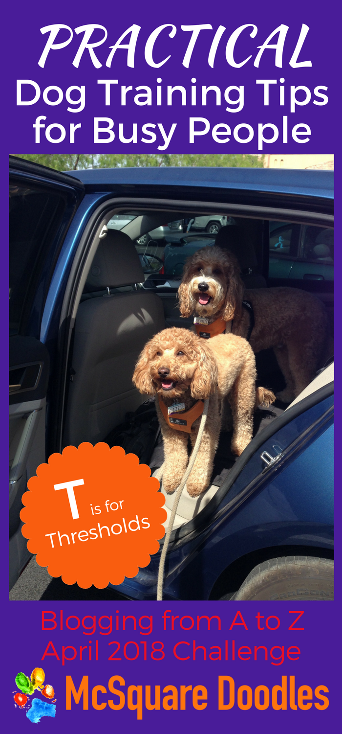 #AtoZChallenge - T  is for Thresholds - Practical Dog Training Tips for Busy People on McSquare Doodles