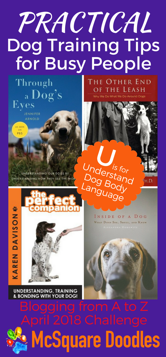 #AtoZChallenge - U  is for Understand Dog Body Language - Practical Dog Training Tips for Busy People on McSquare Doodles