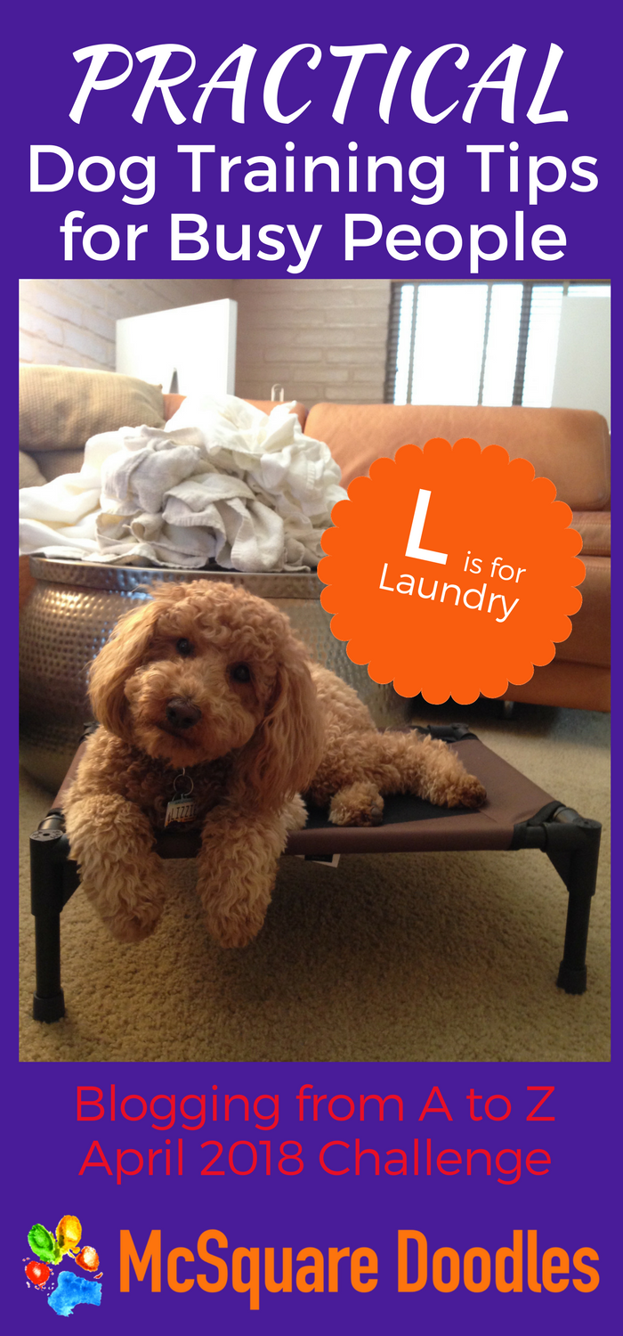 #AtoZChallenge - L is for Laundry- Practical Dog Training Tips for Busy People on McSquare Doodles