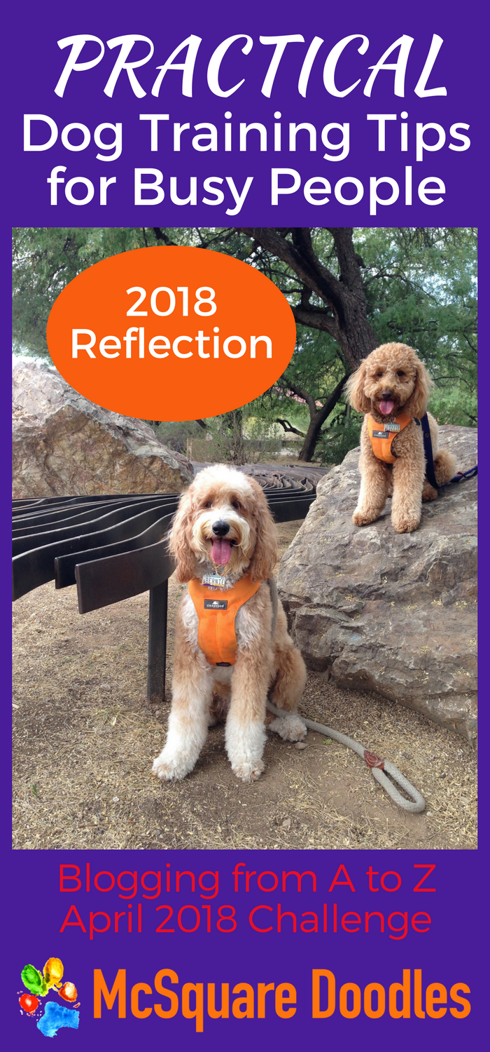 Blogging from A to Z Challenge: Practical Dog Training Tips for Busy People Reflection Post