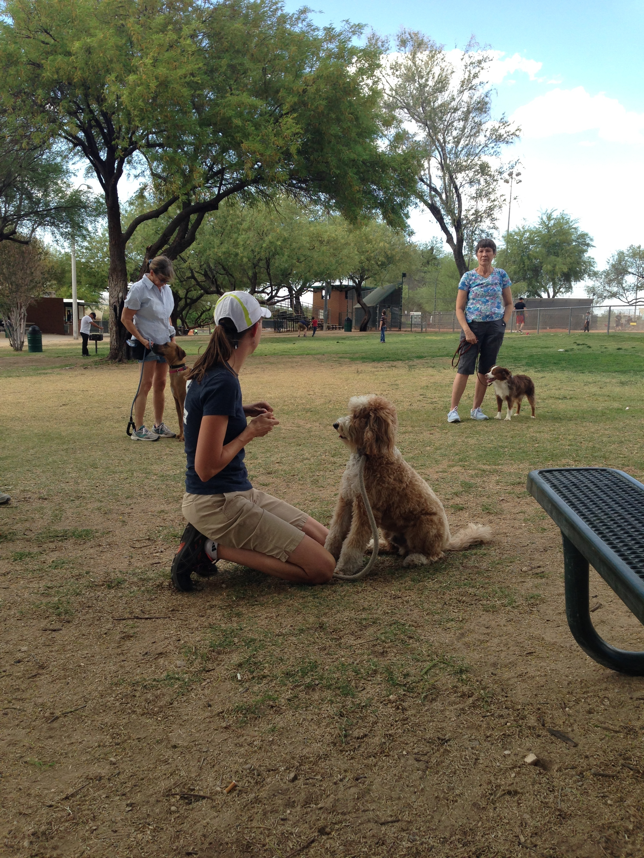 Crystal Blaker of Ruff House Dog Training & Behavior Modification explains the Leave It command during Park Obedience Class using Bernie McSquare are her demo dog.