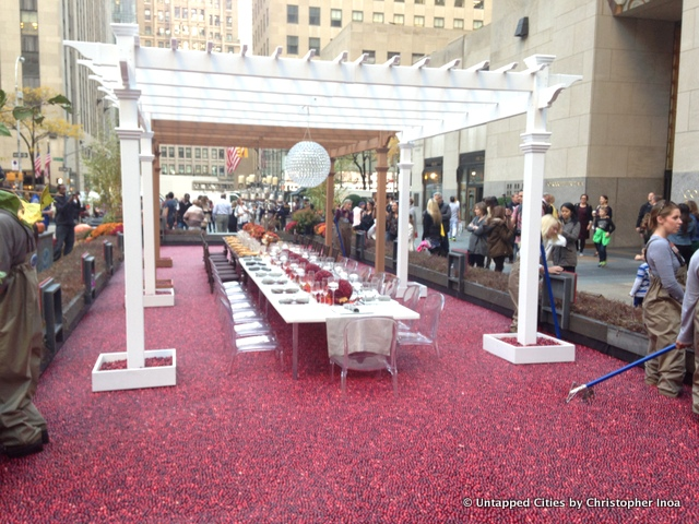 Cranberry-Wonderberry-Rockefeller-Center-Pit-of-Cranberries-Ocean-Spray-NYC-0061.jpg