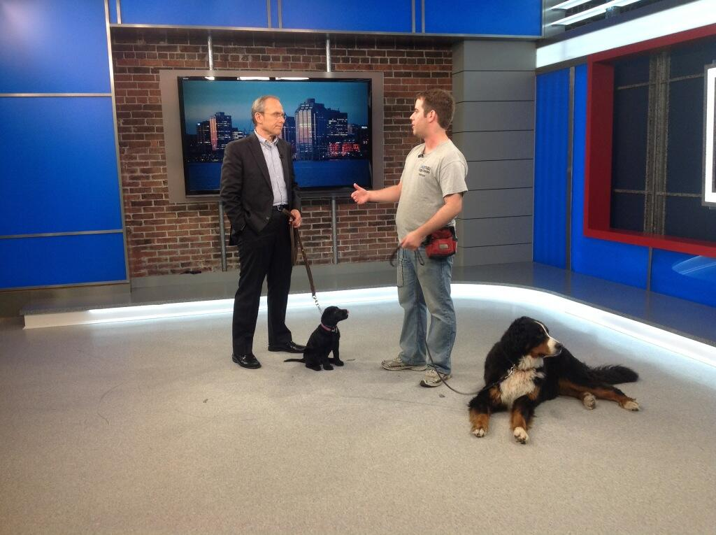 Tristan hosts 'Dog Talk' on the Global Morning News every 2nd Thursday at 7:45am