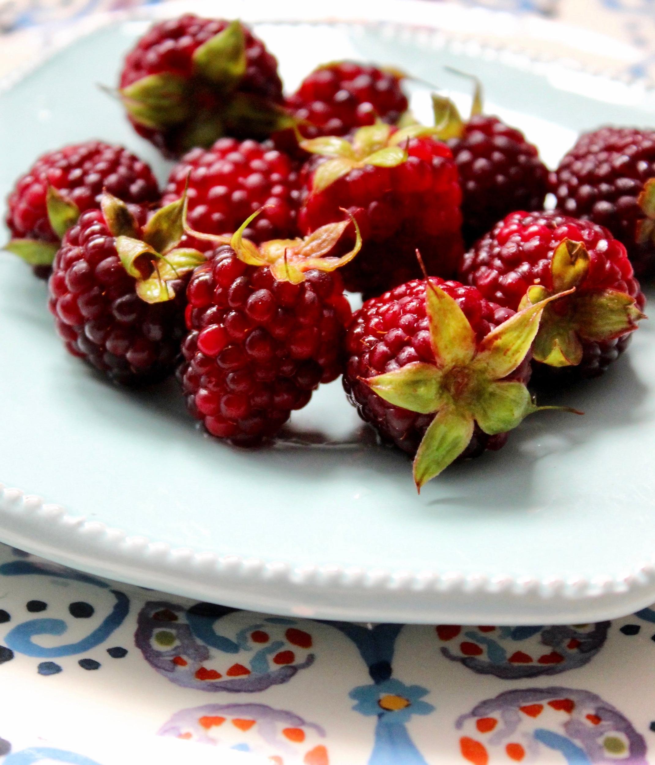 Las moras de castilla son emblemáticas de la sierra, altísimas en vitamina C y sabor intenso, con un color rojo de película.