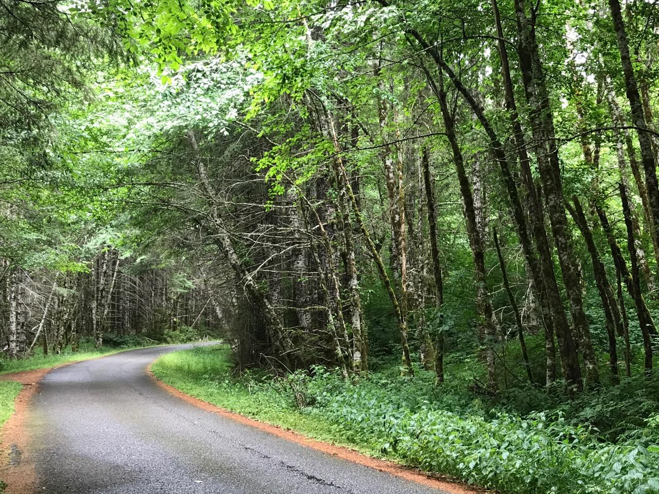 Detour to Tillamook