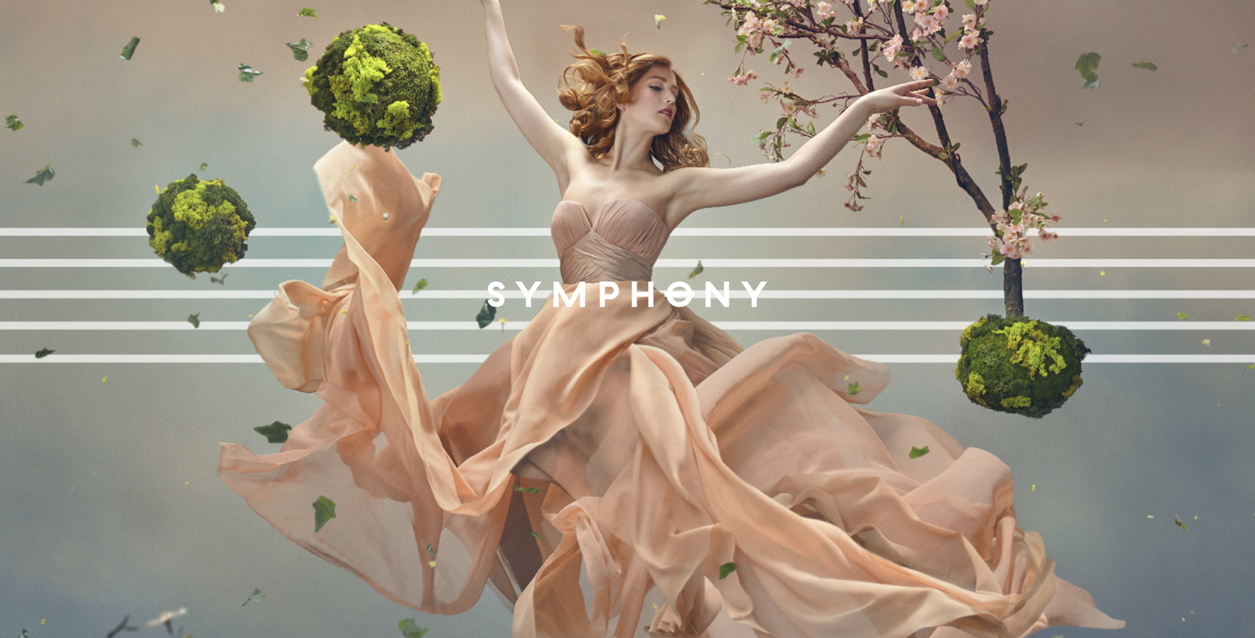 symph1.jpg