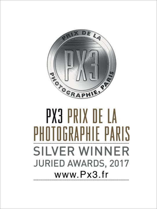 PX3-2017-Silver.jpg