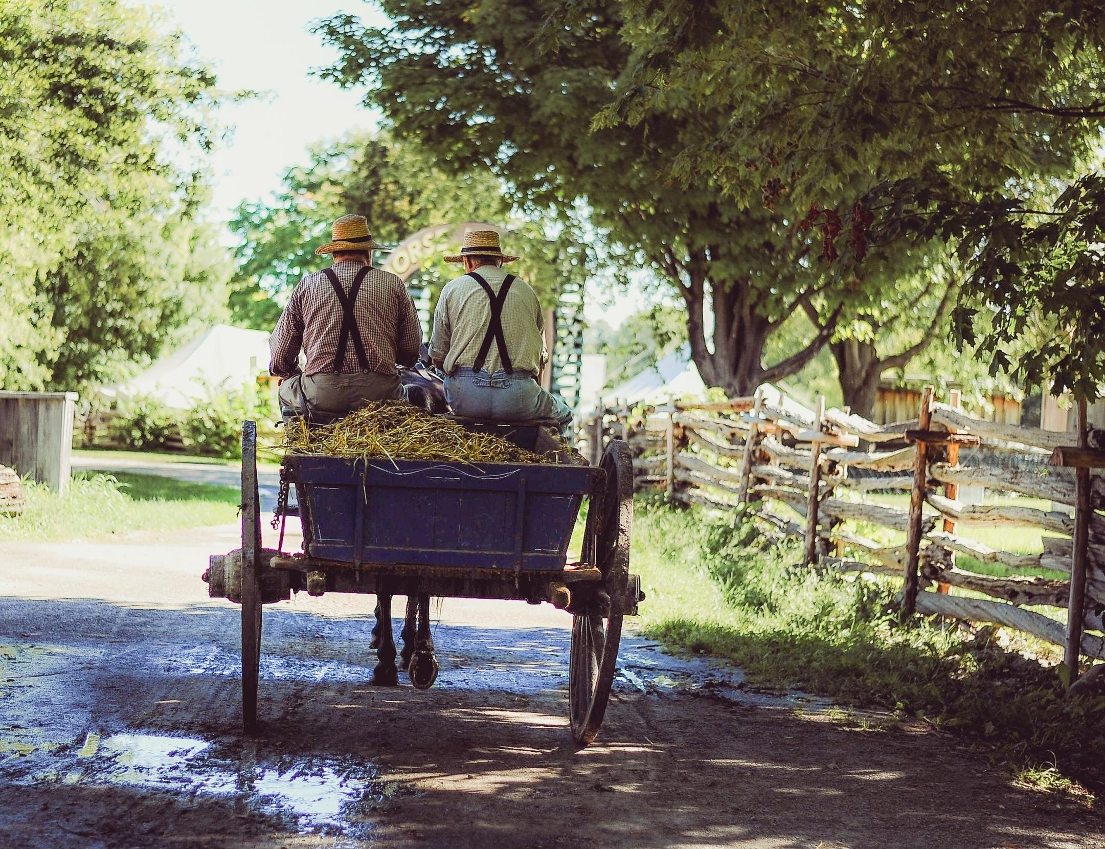 FarmhouseFamily.jpg