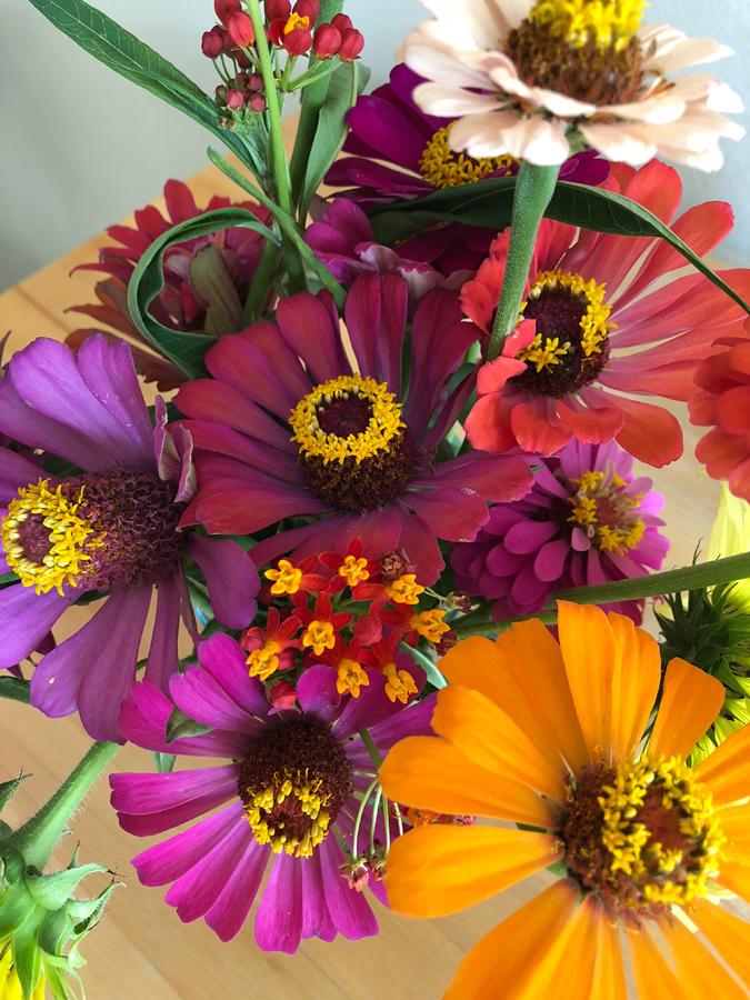Wildflowers_01.jpg