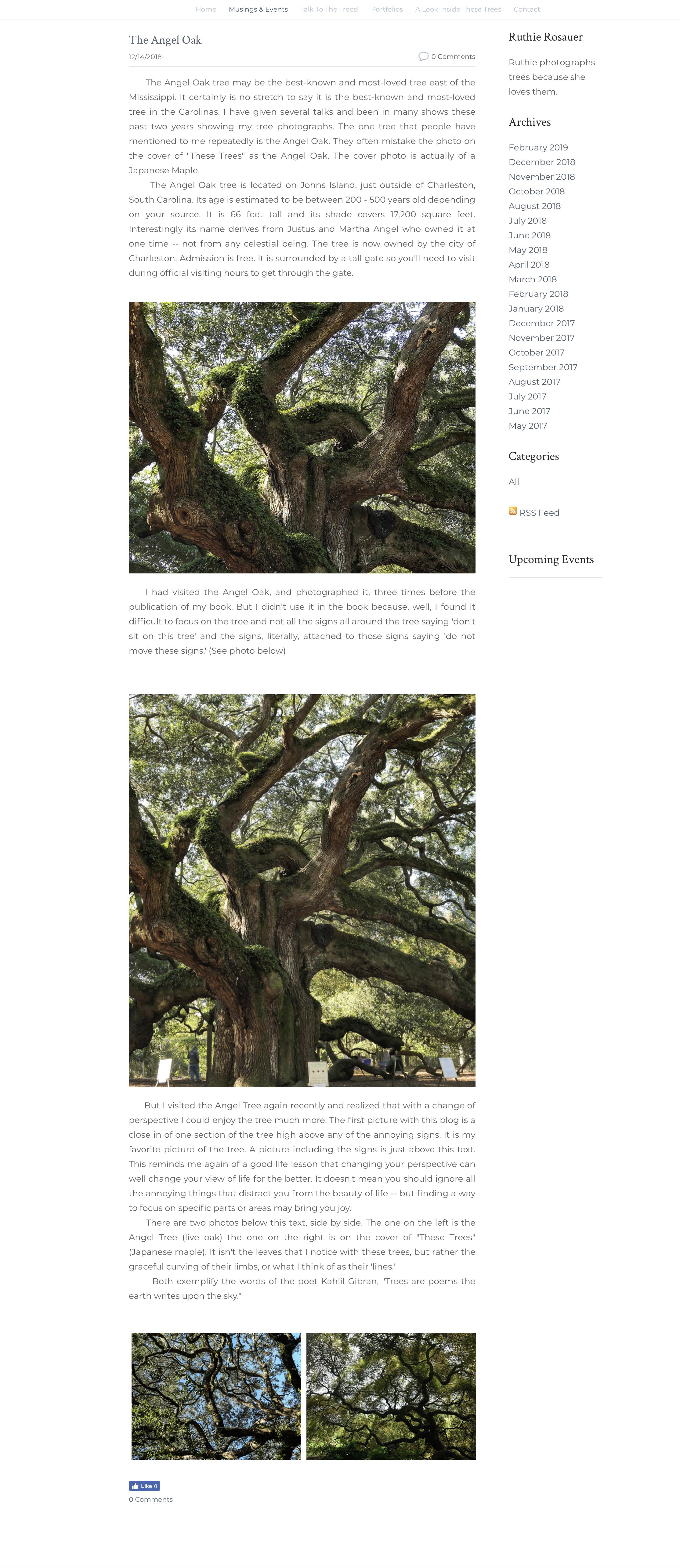 RR Website 07.jpg