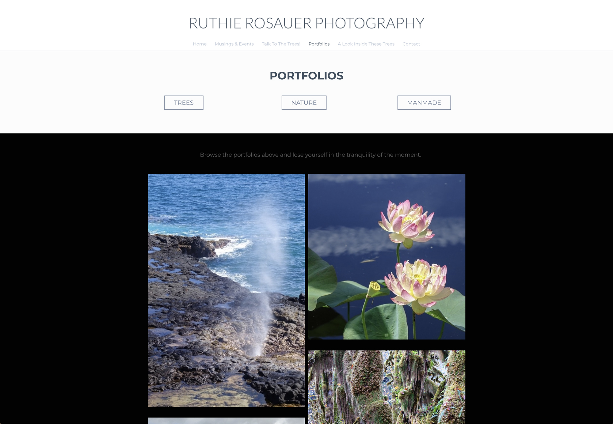 RR Website 06.jpg