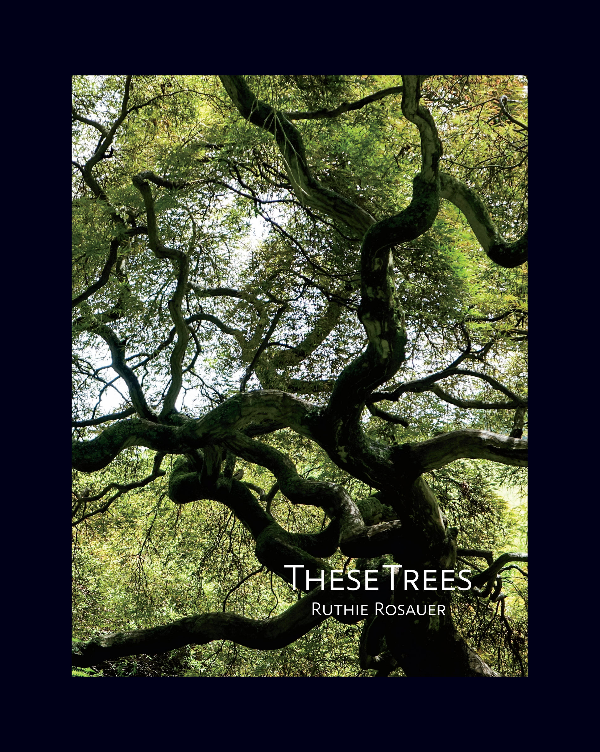 These Trees_Cover.jpg
