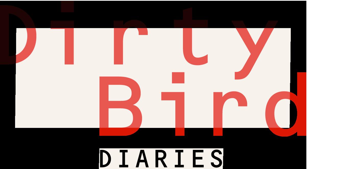 DIRTYBIRD-headerNEWS2.png