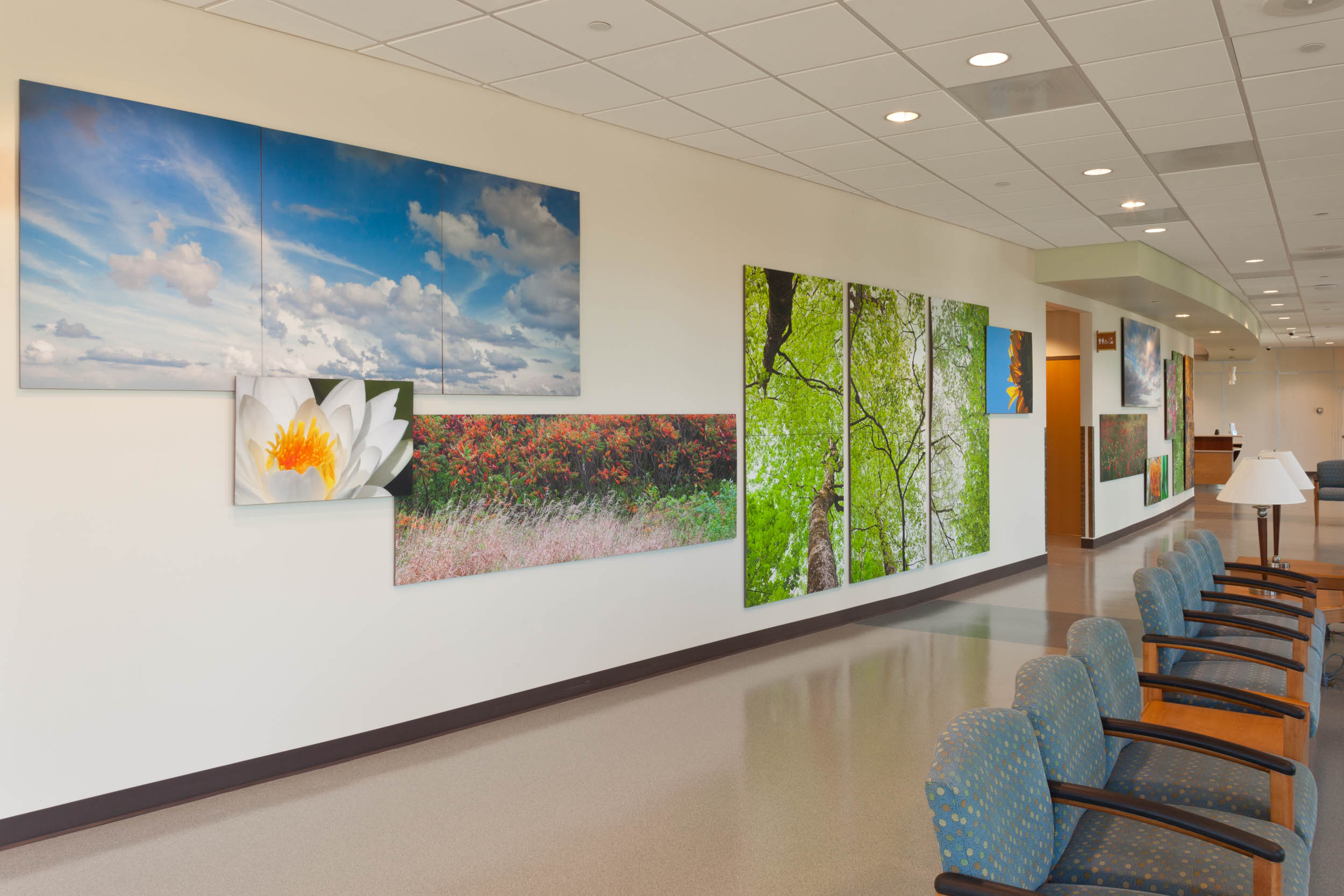 Healing Nature - Baptist South Emergency Lobby 1