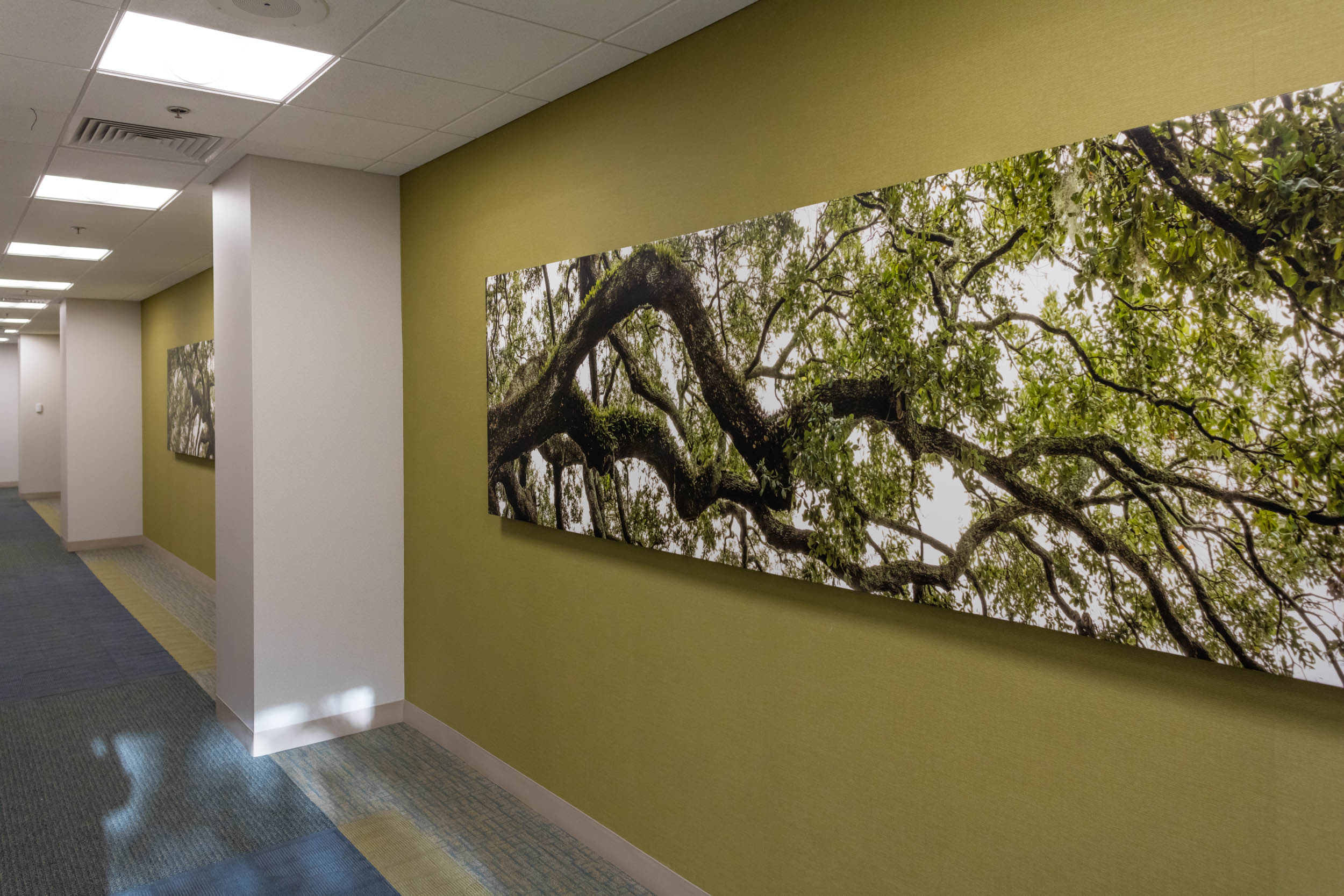 Cummer Oak C - Print on canvas