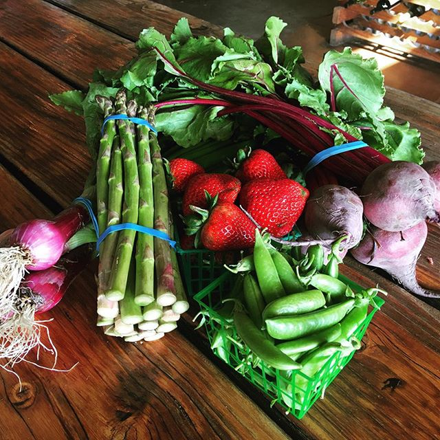 Watsonville strawberries, local asparagus, fresh picked beets, onions and sugar snap peas.  All your favorite Spring time fruits and veggies  are in! #freshproduce #gardenveggies #grownlocal #yum