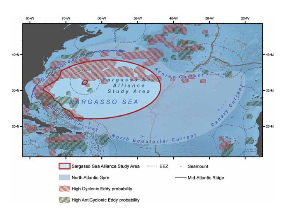 Study area of Sargasso Sea and boundary delineations. Graphic courtesy of Ardon et al. for the Sargasso Sea Alliance.