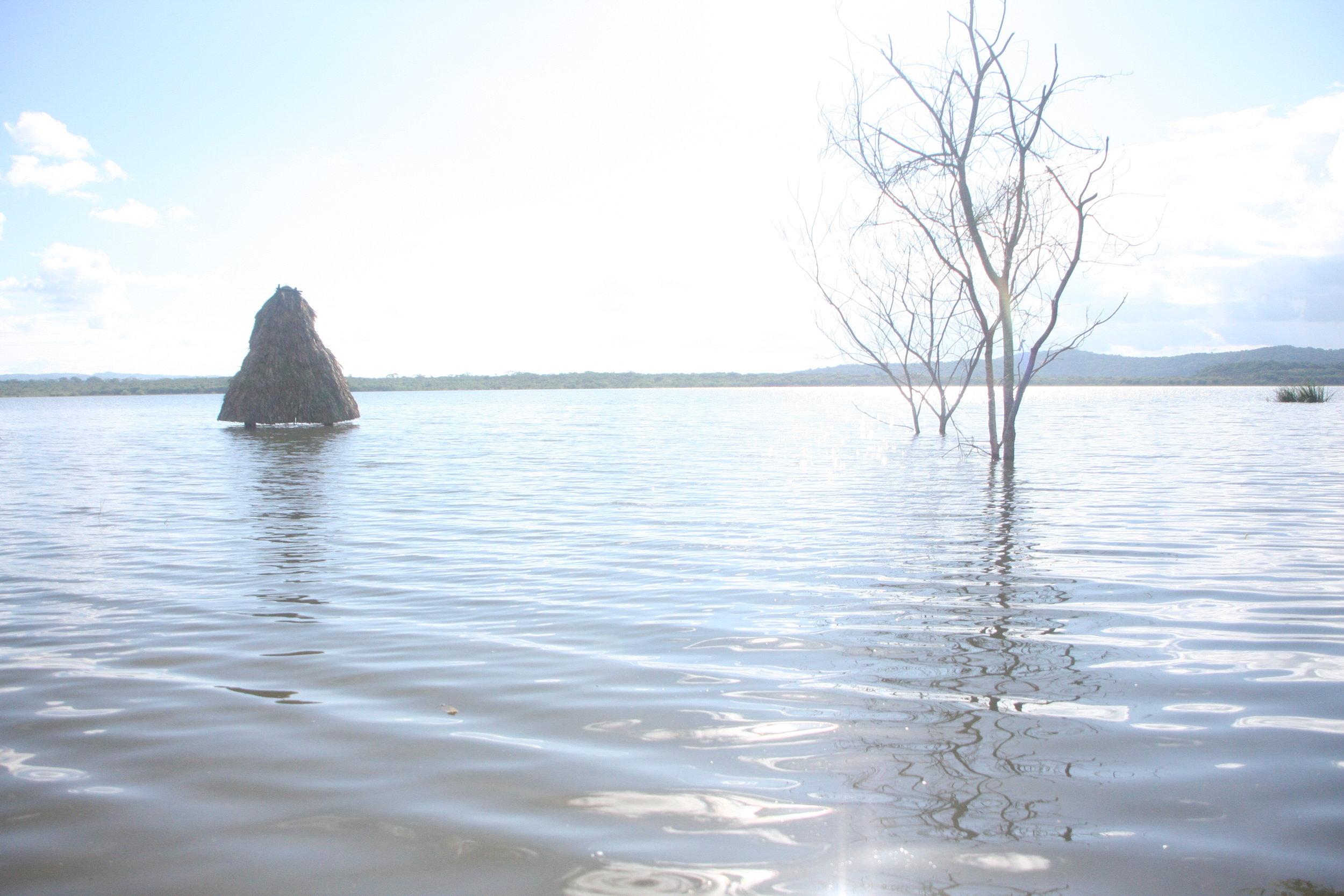 Risen water levels of Laguna Yaxhá.