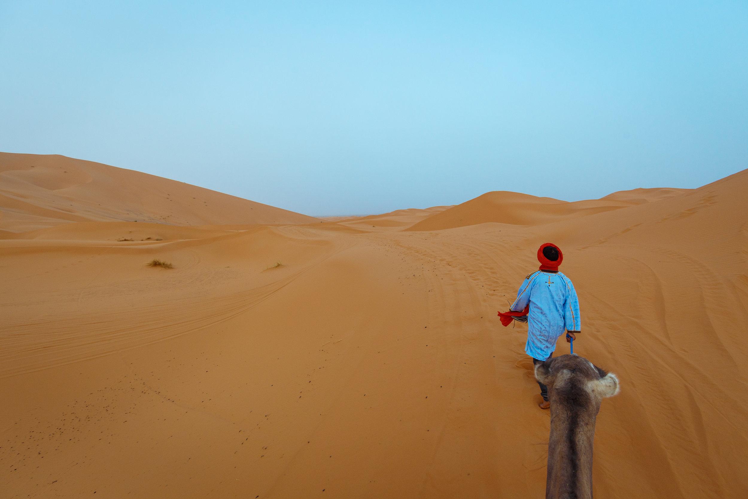 Camel trekking into the Sahara Desert.