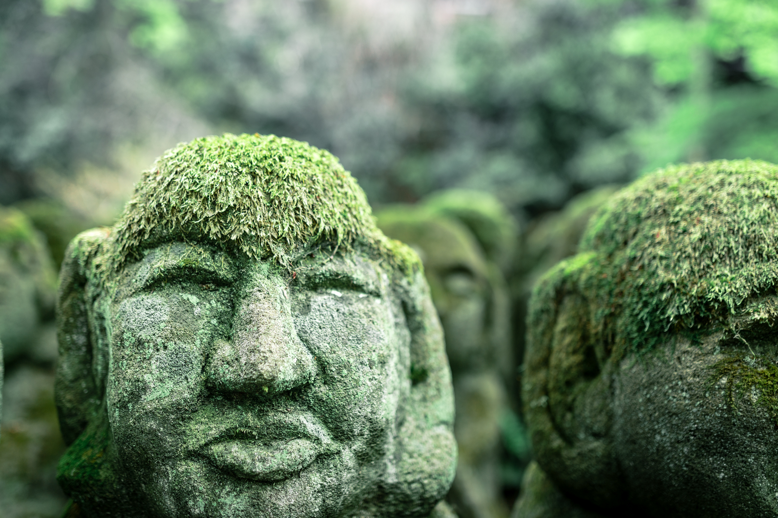 A solemn face of a moss-covered  rakan.