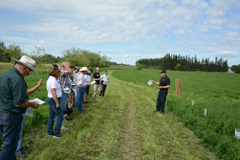 Producers veiw the alfalfa plots with different fertilizer application rates at the McDonald's Production Day Tour on July 26, 2016