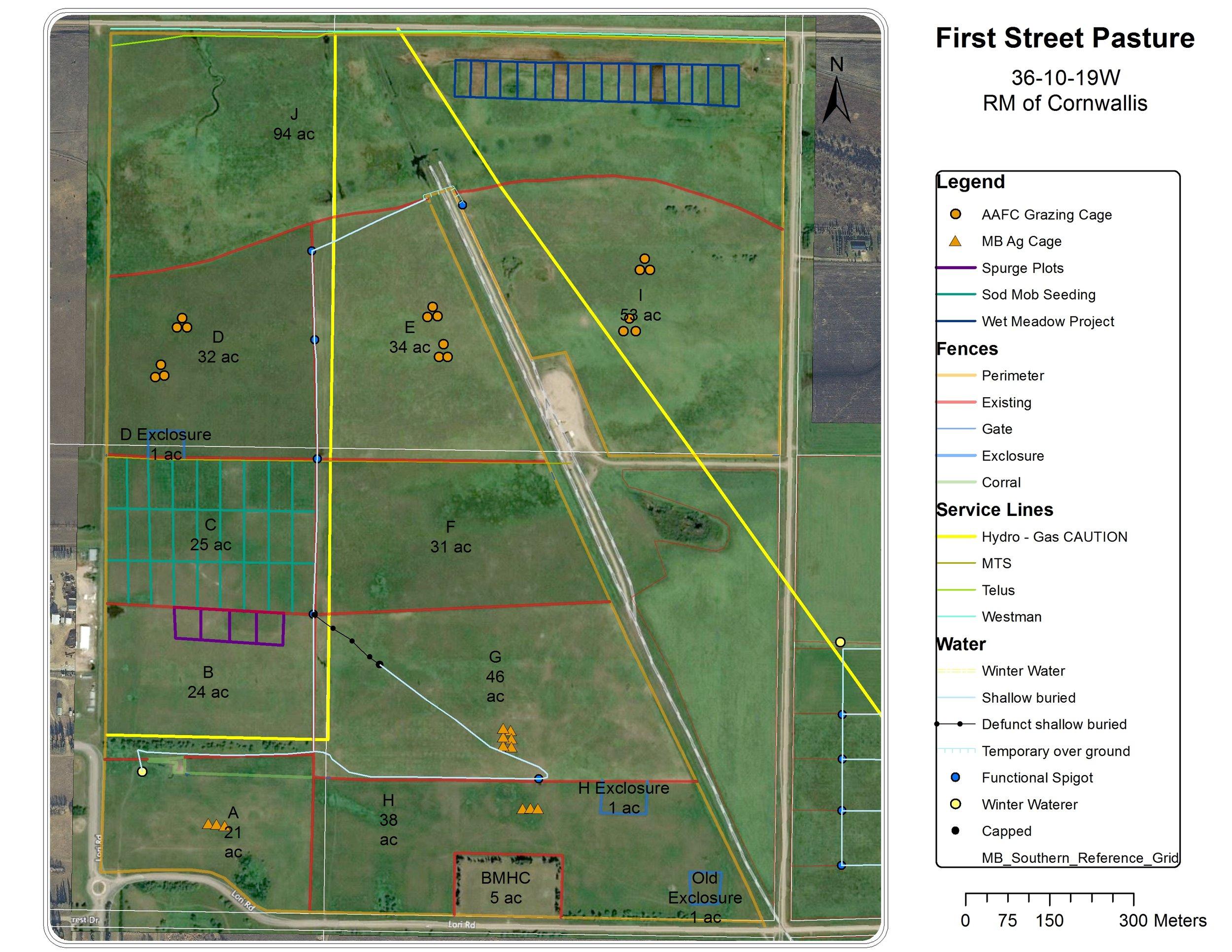 First Street Map
