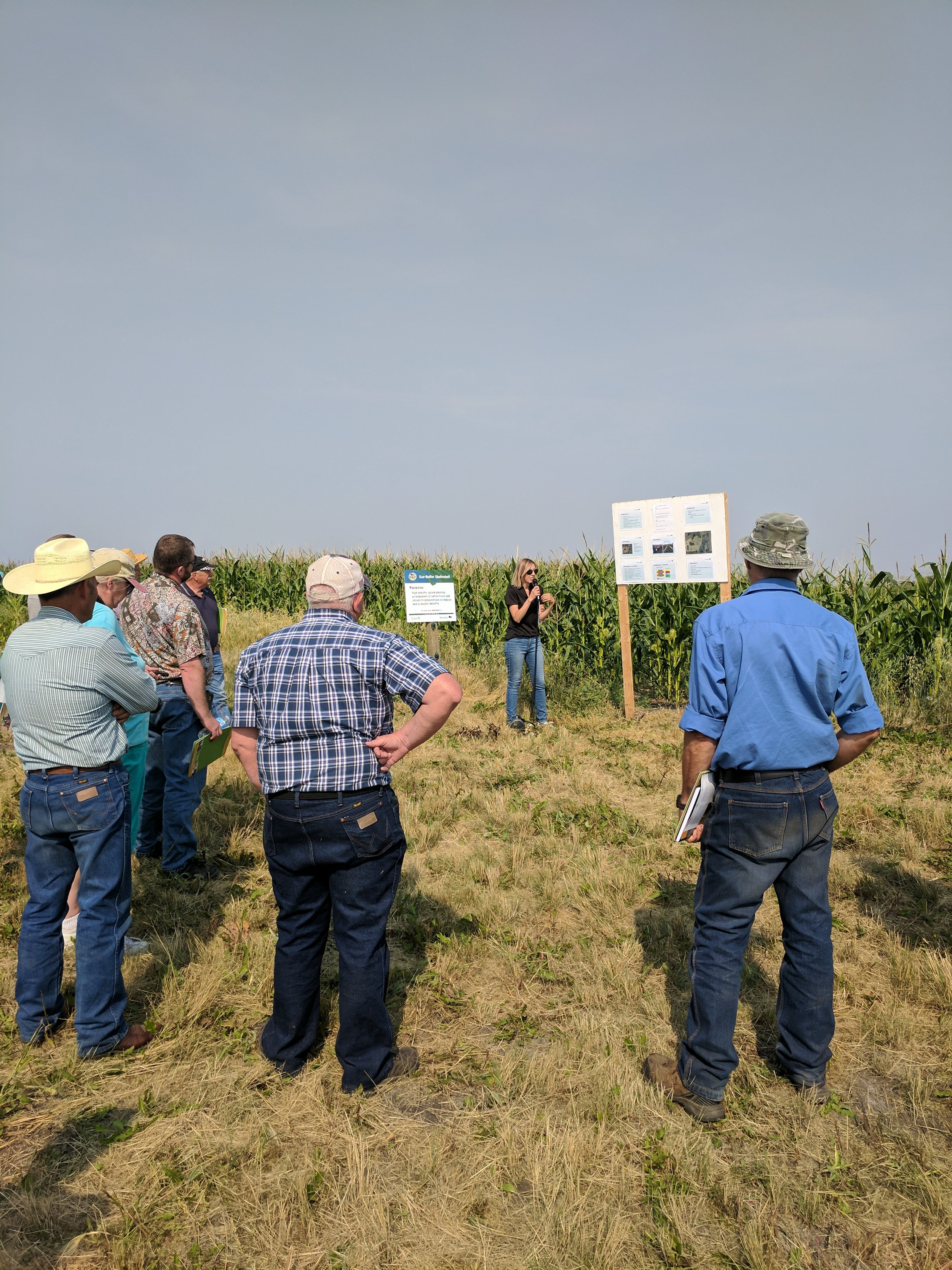 Kim Wolfe, MB Agriculture, discussing her shelterbelt project at the Brookdale Pasture Day 2017