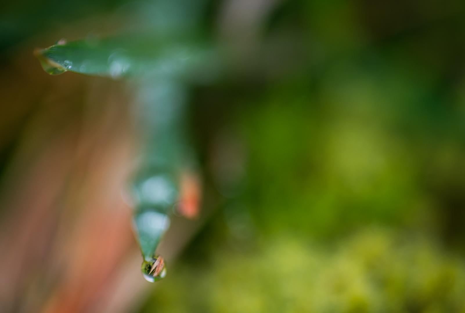 Sev.photography-Website-40.jpg
