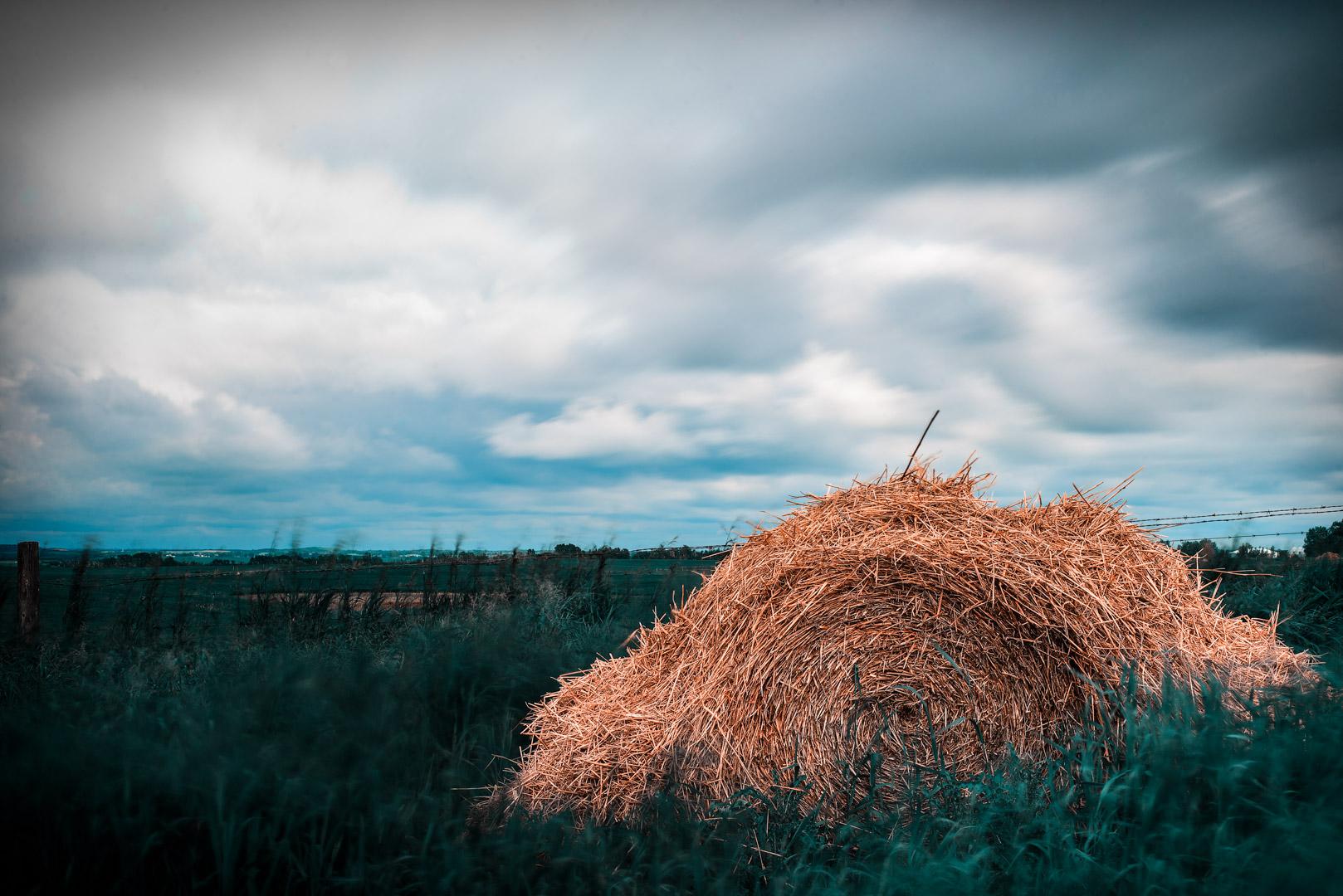 Sev.photography-Website-49.jpg