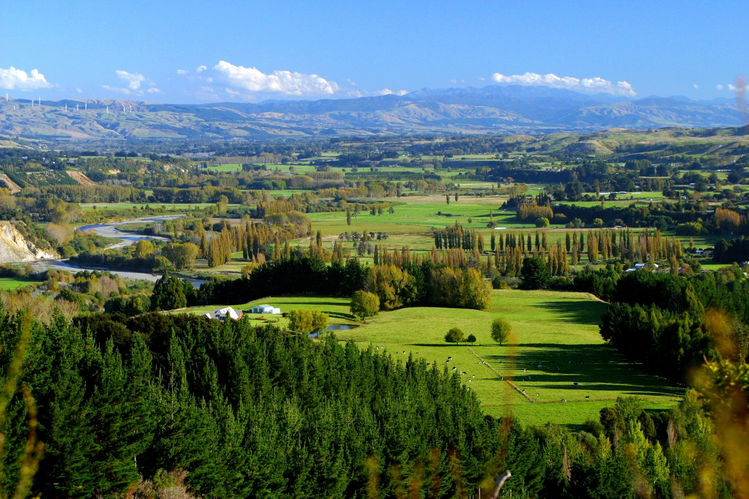 Pohangina Valley