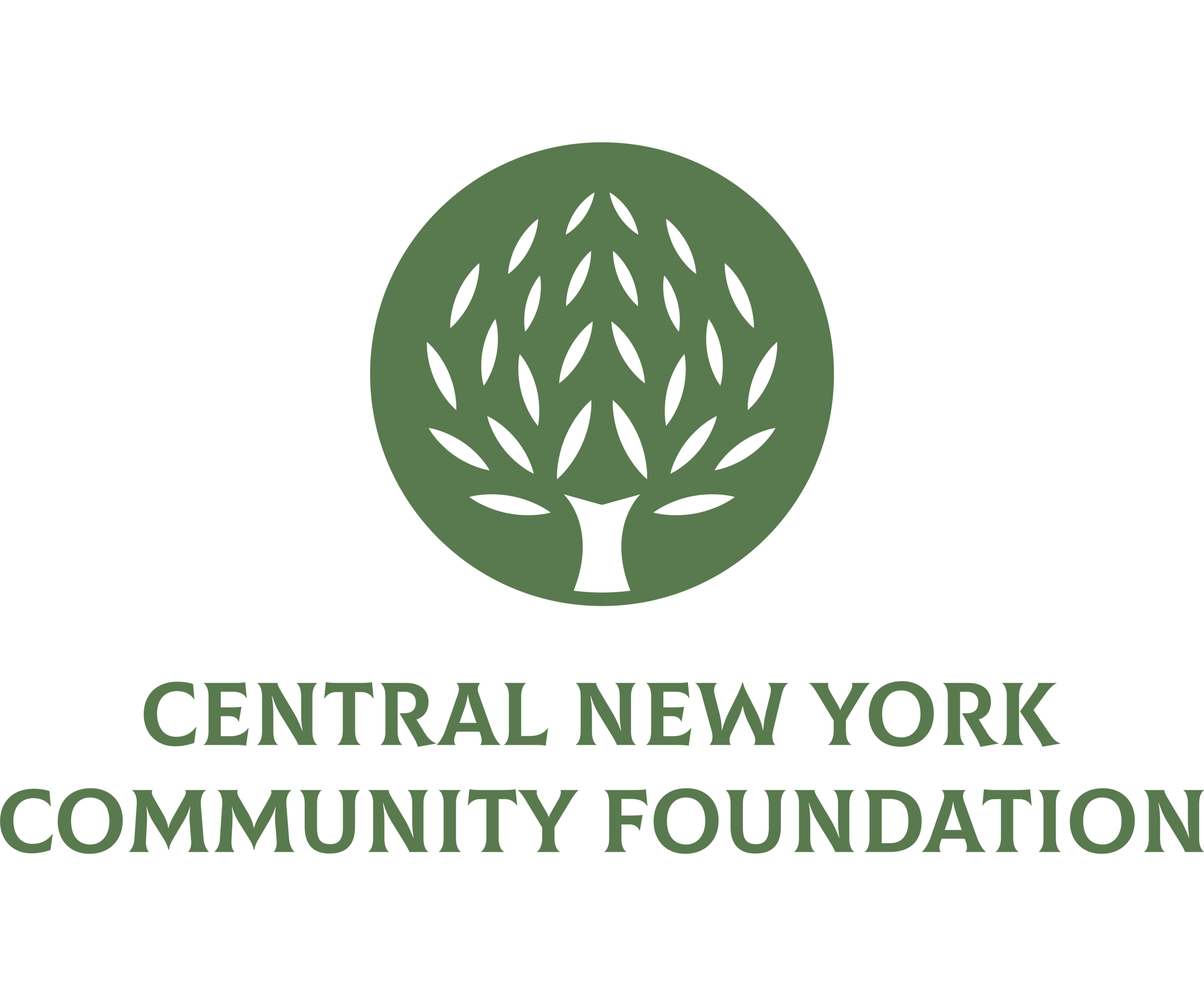 resizedCNYCF-Logo-Green-new (1).png