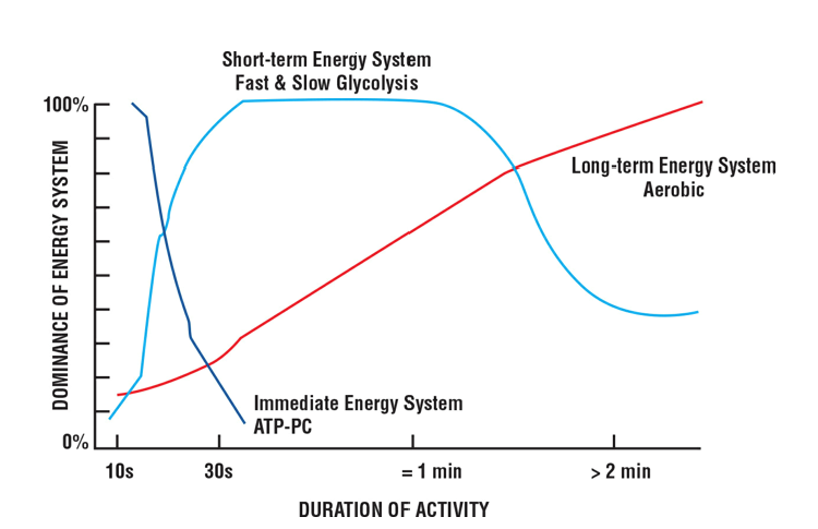 Dominant Energy System Based on Activity Duration (NSCA, 2012)