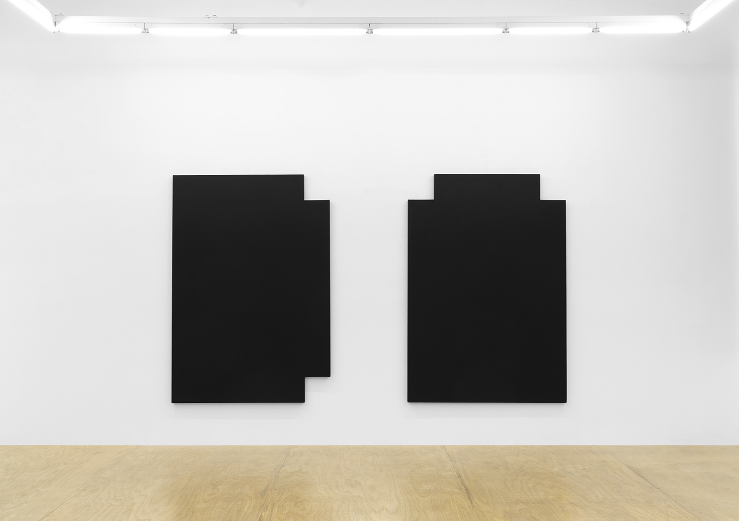 Joshua Evan, Shielding Monochrome #4 (L) and Shielding Monochrome #5 (R), EMF shielding paint on canvas, 2017, courtesy ASHES/ASHES